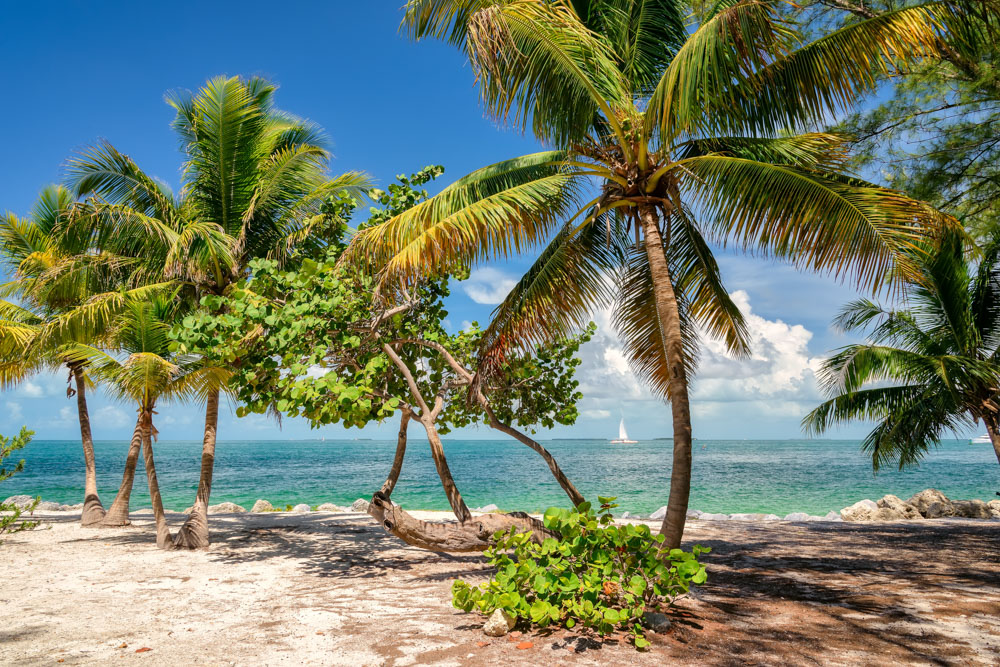 A prime destination for Ernest Hemingway and Jimmy Buffet, Key West is known for its palm-lined streets and fresh fish perfect for the culinary traveler!