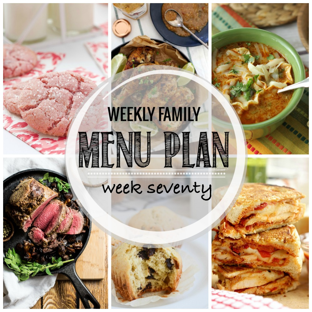 Weekly Family Menu Plan - Week Seventy is brought to you by a group of food bloggers who love to plan ahead! A weekly edition of thoughtfully prepared recipes is rounded up to get you through those busy weeks! | www.cookingandbeer.com