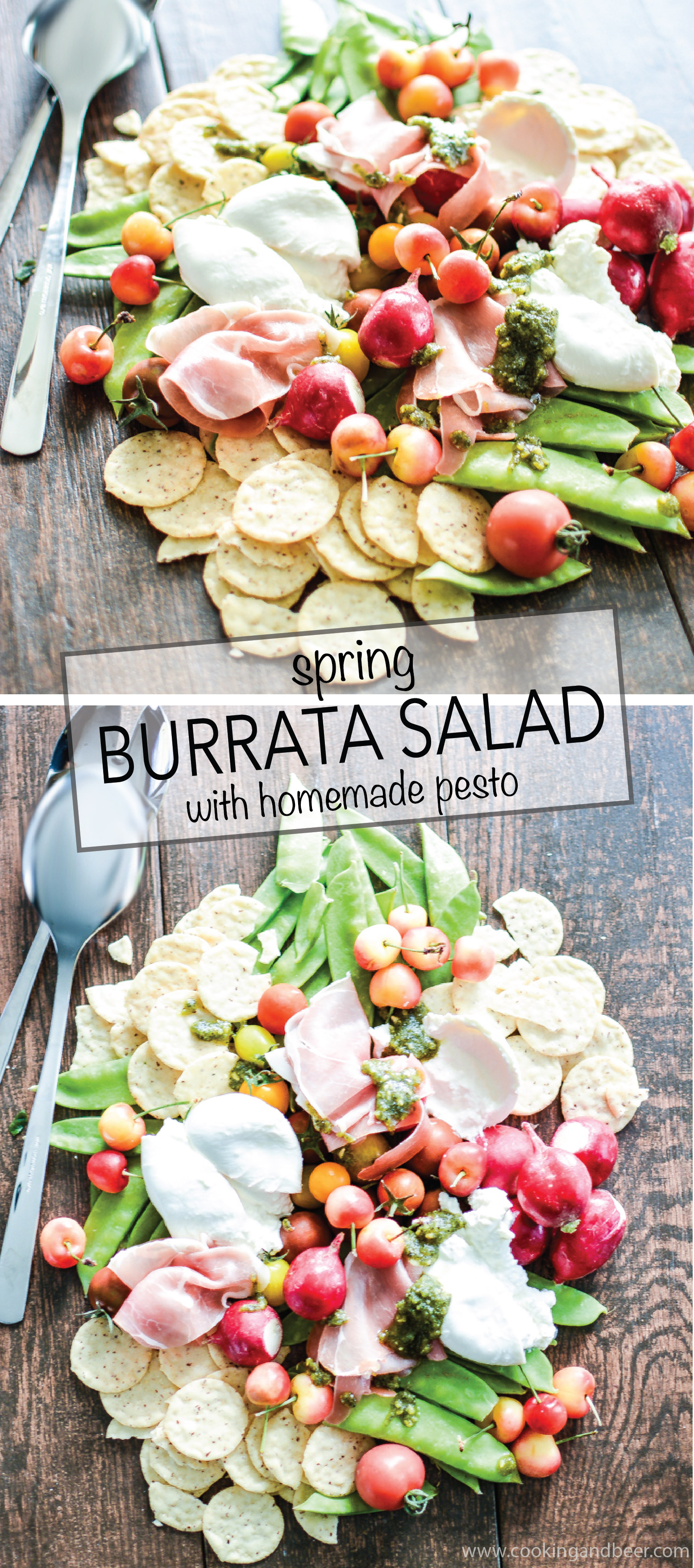 Spring Burrata Salad with Homemade Pesto is a refreshing and delicious way to celebrate spring!